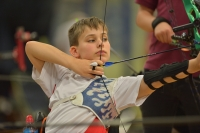 British Wheelchair Archery Association
